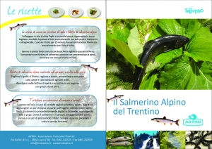 thumbnail of brochure Salmerino Alpino