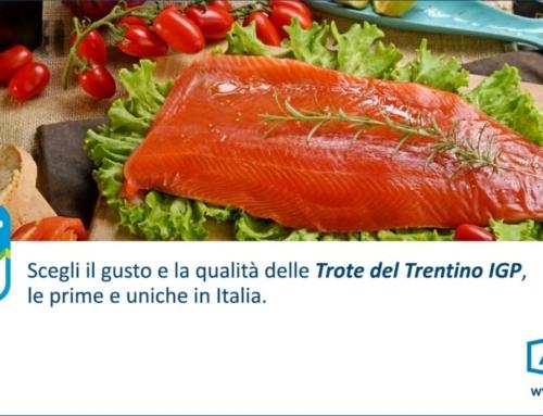 """Ultime novità: la nostra nuova pagina pubblicitaria """"Trote del Trentino IGP"""""""