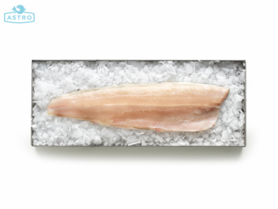 filetto di salmerino