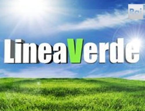Il marchio Qualità Trentino a Linea Verde
