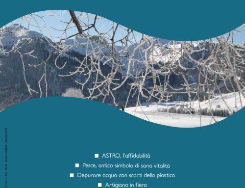 Il Guizzo Trentino n. 4